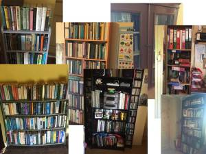 books, reading, bookshelves